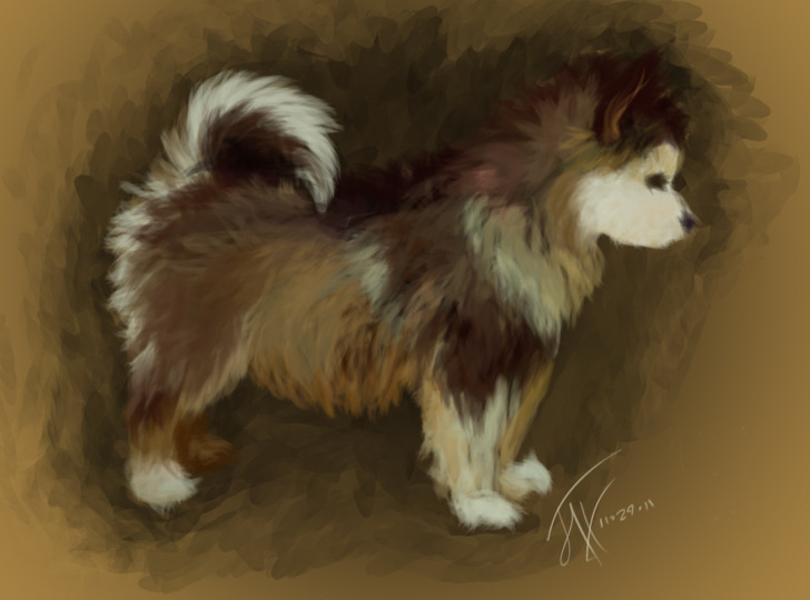 carpethatdiem:  Color study, heavily referenced, yadda yadda puppy.