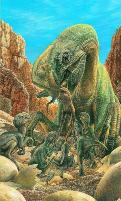 agdavenport:  Oviraptor feeding its brood
