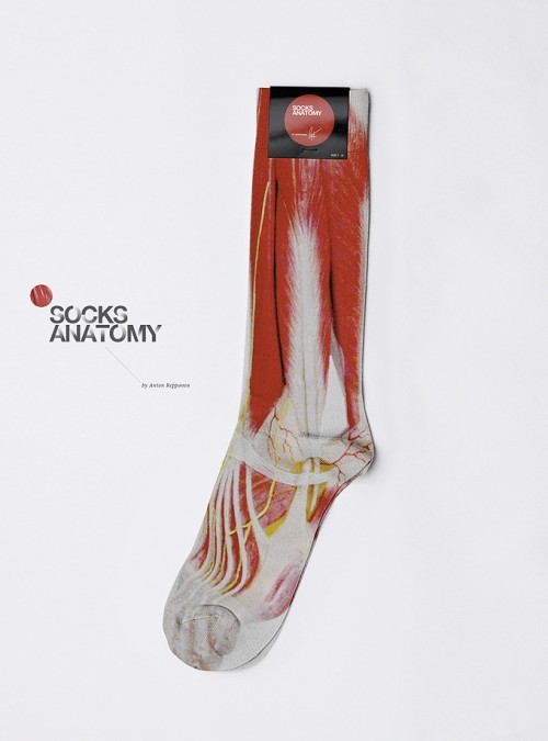 Socks Anatomy | via Haute Macabre