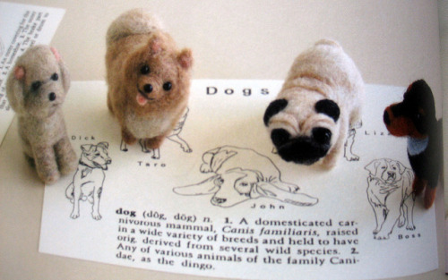 9784056060720 wool felt animals-japanese needle felting book by feltcafe on Flickr.
