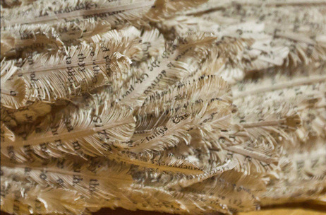 Feathers made from a book, by The Library Phantom of Edinburgh, Scotland