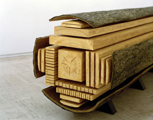 "gordonyung:  Exploding Log: ""Billon"" /  Vincent Kohler"