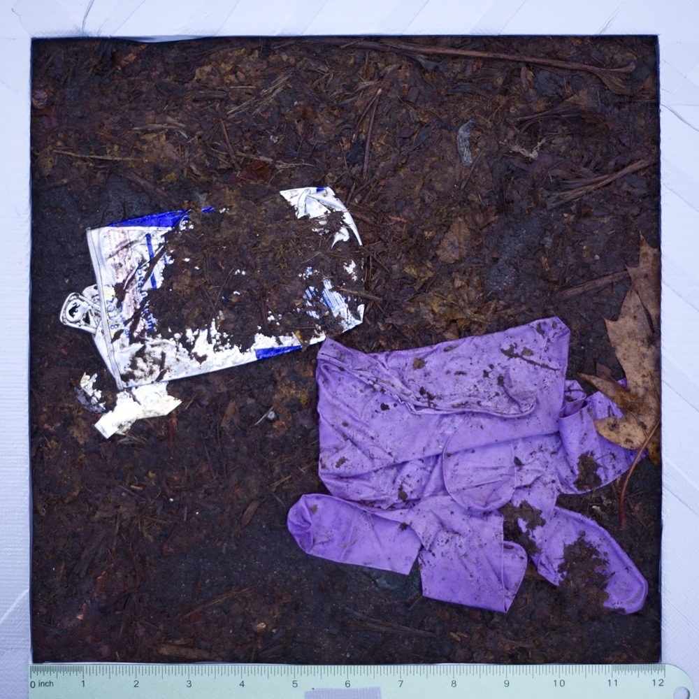 Crushed Red Bull can and purple latex glove, litter, N Chicago.