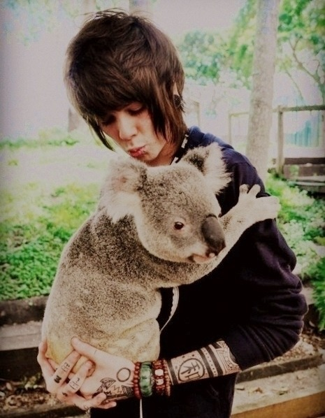littlensnthings:  goffygirl:  I think this picture is so Cute !:)  koalas are some cuddly motherfuckers omg. this whole picture is perf.  This is adorable c: