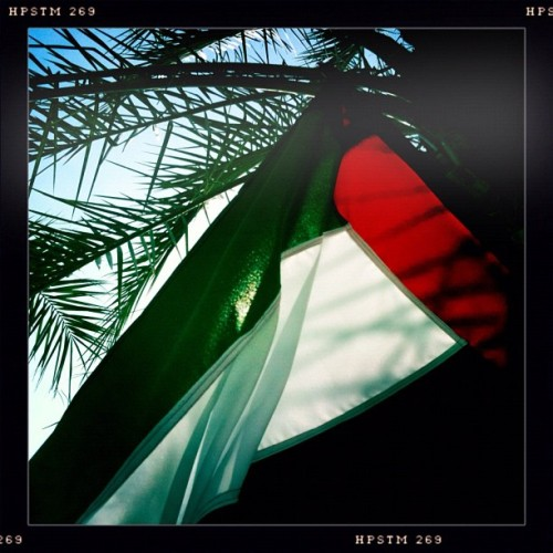 #uae #uaeflag #uae40 #uaenationalday (Taken with Instagram at Jumeirah Zabeel Saray)