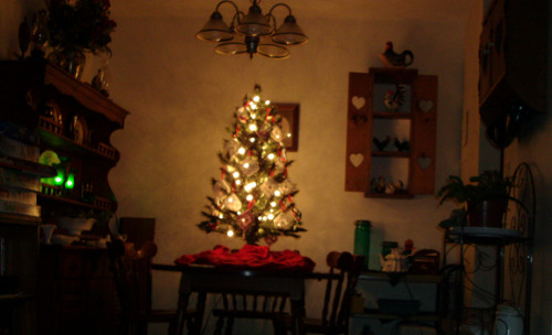 Our tree again. Our dining room, too.