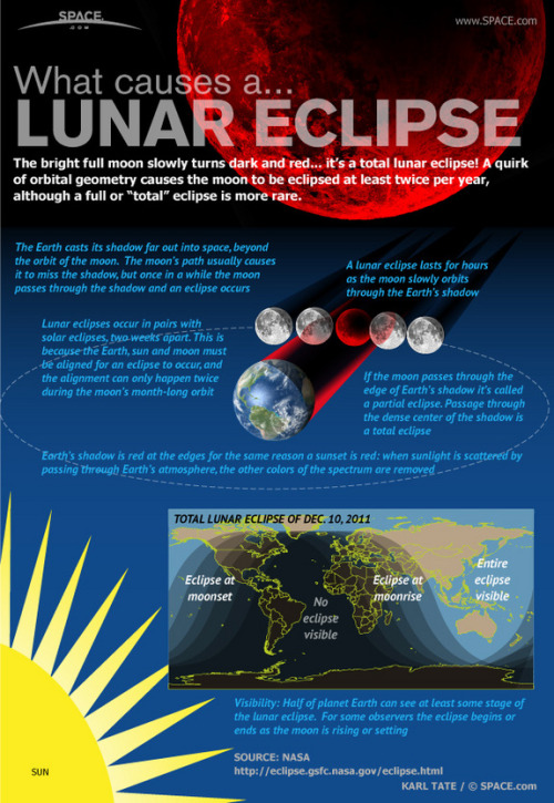 unknownskywalker:  Total Eclipse of the Moon A total lunar eclipse occurs when the moon passes completely beneath Earth's shadow. On Dec. 10, 2011, the second of this year's two total lunar eclipses will occur, and will be visible in Asia, Australia, and will rise and set over Europe and North America, respectively. The first total lunar eclipse of the year occured June 15.