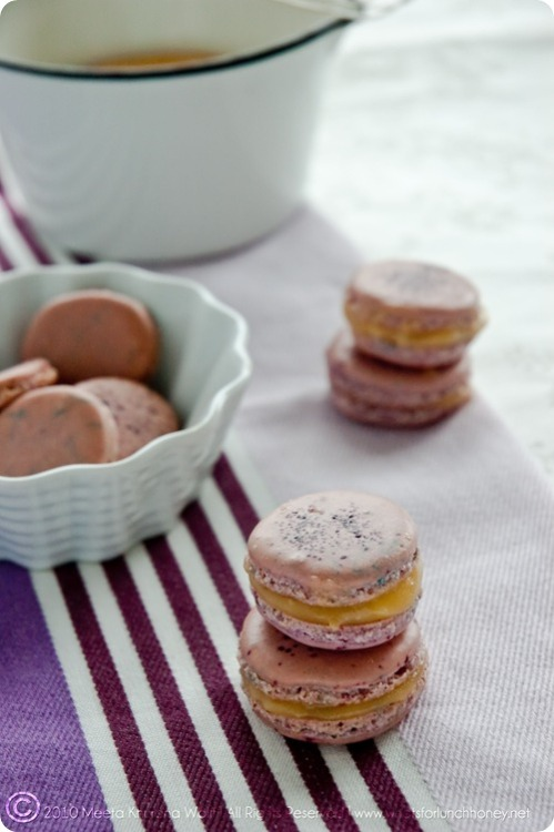 goyenparadise:  Lavender Macarons with Ruby Red Grapefruit Prosecco Curd