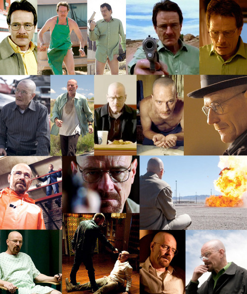 the-awesomer:  The de-evolution of Walter White. (Spoilers) (hi-res image here)