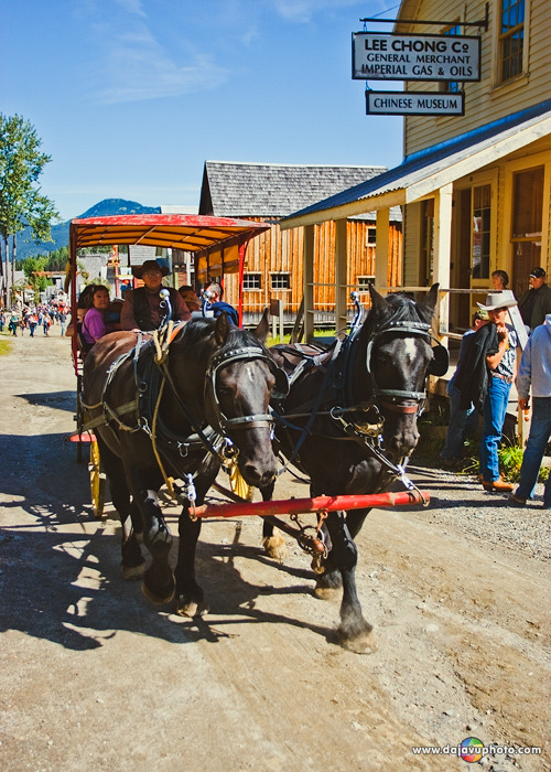 Horse Drawn Tour, Barkerville Historic Town, British Columbia's Gold Rush Town.