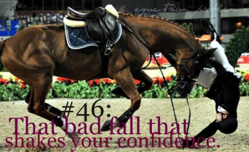 Equestrian Problem #46 Submitted by :pearlsandpalmtrees !
