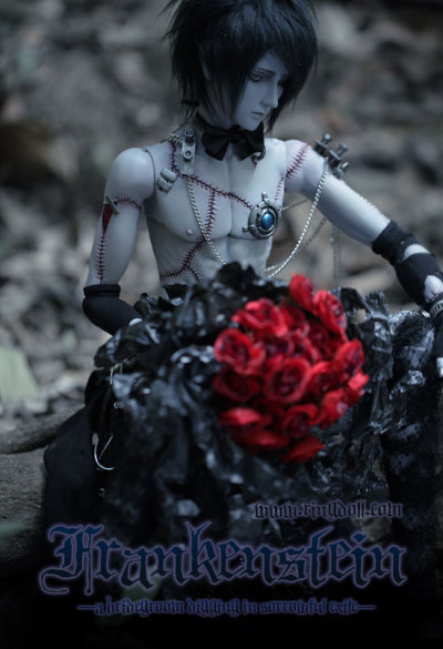 "ringdoll:  Franken Stein  is a limited doll from Dark Ringdoll — order accepted till Jan 15th,2012.  PS: face-up and body drawing look almost the same as picture ""Franken in white shirt"". Layaway is available for him. *Everything is in stock and waiting for your request.  ————————————————————————————————————  How to get him:send a email to us——jenny@ringdoll.com  I've ben waiting for his release since May when I saw the first promo photoset. I love him sooo much *___*"