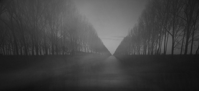Avenue of Dreams [Explored] by  Strange_Photography on Flickr.