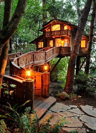 Inhabited Tree House, Seattle Washington   Absolutely dream house :) (source: http://pinterest.com/pin/149041068887817050/)