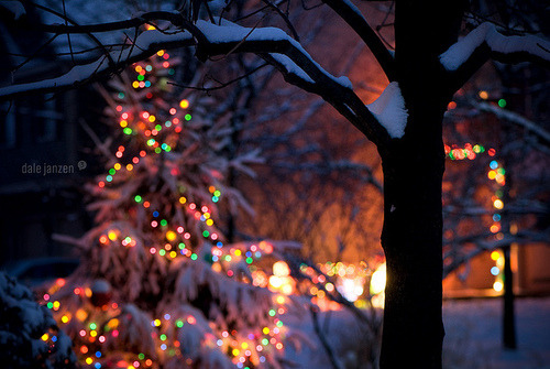 kiss-me-in-the-snow:  Christmas Twilight | Flickr - Photo Sharing! on We Heart It. http://weheartit.com/entry/18662696