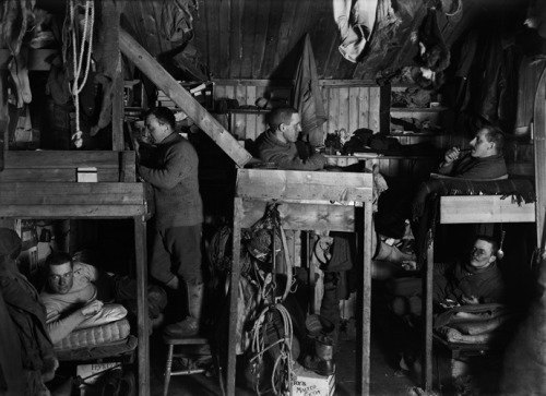 The Tenements Bunks in Hut, Scott Expedition, Antarctica, 1911 Herbert George Ponting