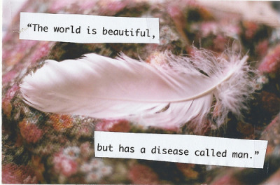 the world is beautiful, but has a disease called man. (by Ester Tothova)