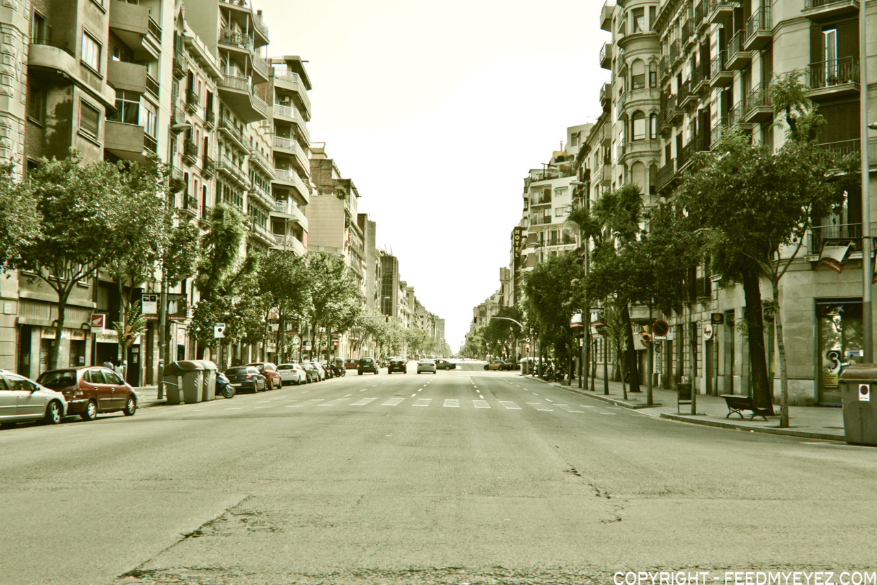 a little bit summer in the winter - Streets of Barcelona…