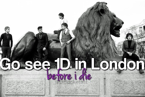 Go see One Direction in London.