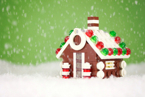 Build It Yourself: Gingerbread House by powerpig on Flickr.