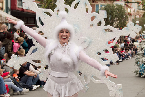 fuckyeahdisneyentertainment:  A Christmas Fantasy Parade: Snowflake by armadillo444 on Flickr.