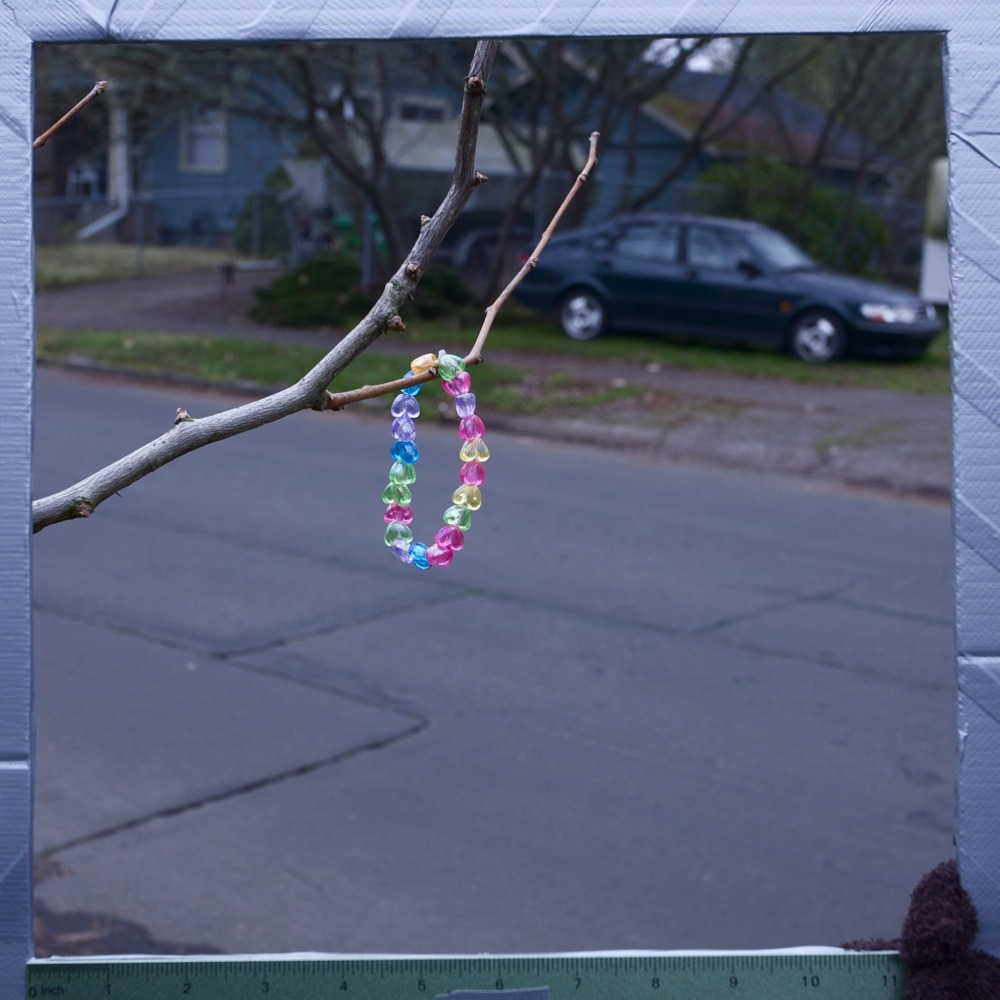 Multi-colored bracelet made of transparent heart beads, hanging from tree, N Central St.