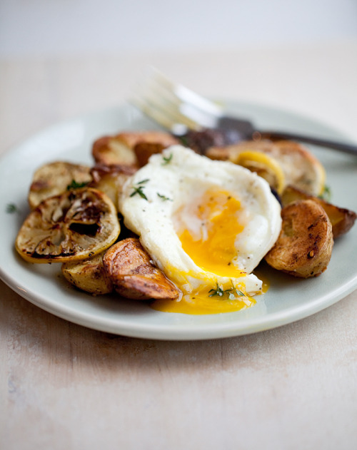 Running With Tweezers  Roasted Baby Potatoes with Lemon and a an Egg