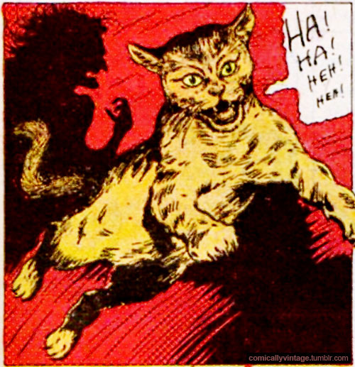 comicallyvintage:  Beware of the angry laughing lolcat!