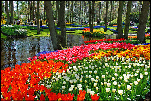 Spring flower garden in Keutenhof, The Netherlands