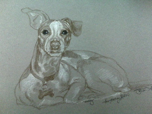 Hurley - November, 2009 (Charcoal/chalk pastel on pastel paper)