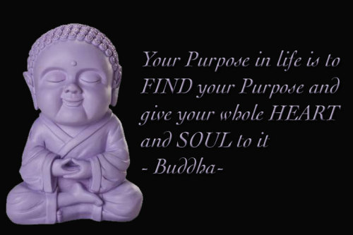 Your Purpose in life is to FIND your Purpose and give your whole HEART and SOUL to it -Buddha-