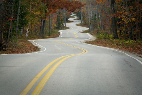 myedol:  Door County Curvy Road Photo #8541 by mckenziemedia on Flickr.