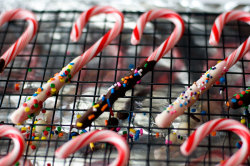 gastrogirl:  simple chocolate-coated candy canes.