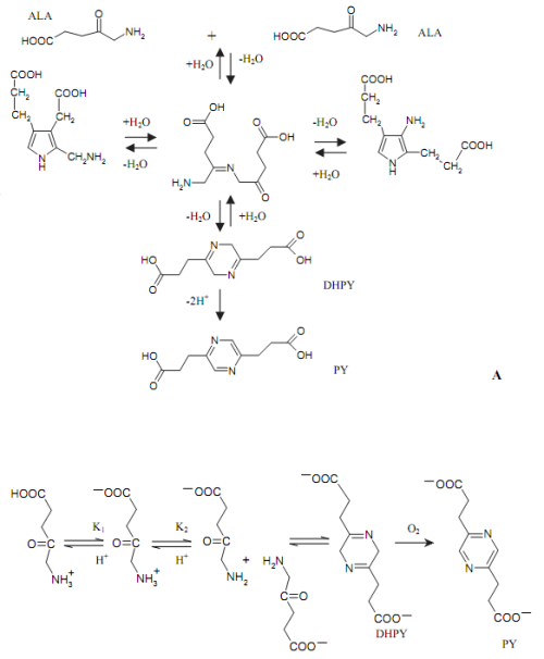 Figure 3 from 'Derivatives of 5-Aminolevulinic Acid for Photodynamic Therapy' Published in Perspectives in Medicinal Chemistry