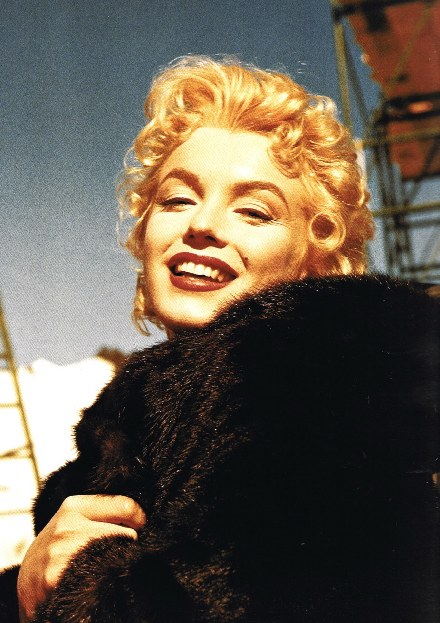hollyhocksandtulips:  Marilyn