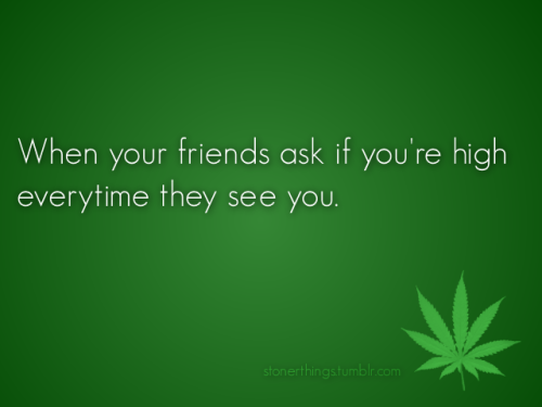 lysergiic:  shesmokespot:  bluntgirl:  ALL THE TIME.  OMG YESS  story of my life