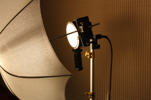 Photo of the Day:Lighting Set Up We are proud to announce that pre-production has finally ended and shooting has commenced! One thing we have quickly learned is that lighting really is everything. We've got two 1000 watt Lowell lights which we are using to light each set. We've got a large umbrella on the back to help deflect light back on the set, as well as a smaller umbrella directly in front to help the glare. 1000 watts is a huge amount of light and we certainly don't need it all, but the intensity has helped create some nice shadows and contrast! When doing a stop motion film we would highly suggest not skimping or forgetting the importance of professional, quality lighting!