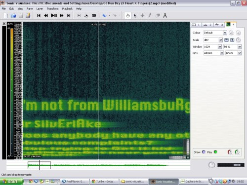 I ADDED A SPECTOGRAM TO THE FILE AND IT'S THE LYRICS I CAN DIE HAPPY The noises at the end of Cryptozoology code for the lyrics in the song!
