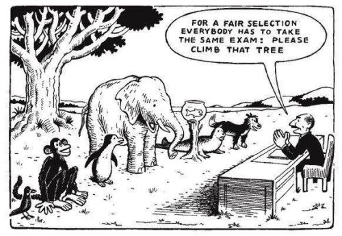 Demonstration of our Education system in a single image