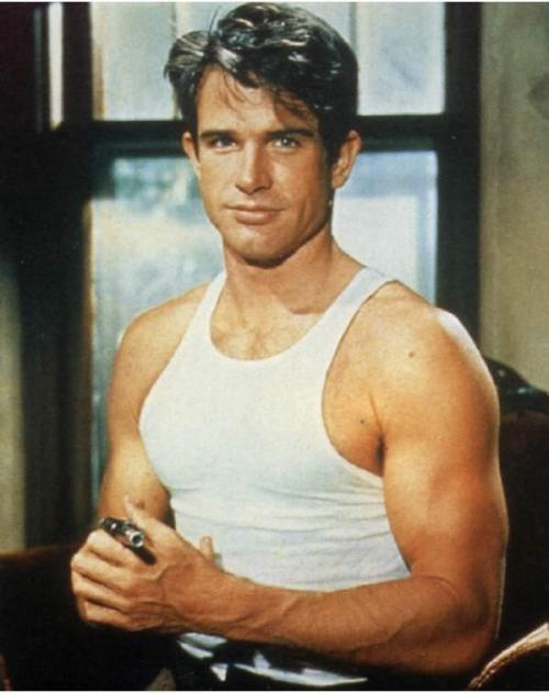 Young Warren Beatty