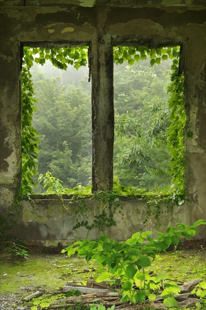 green magic window