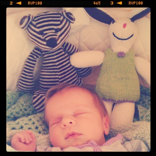 Hazel and her softies. Love.  (Taken with Instagram at The Dixon's)
