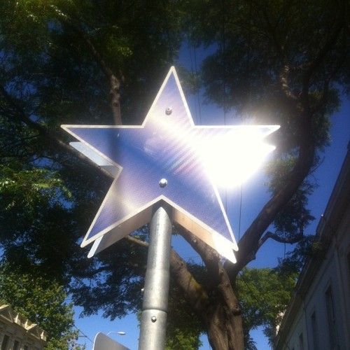 Collingwood's sole Christmas decoration is up! (Taken with instagram)
