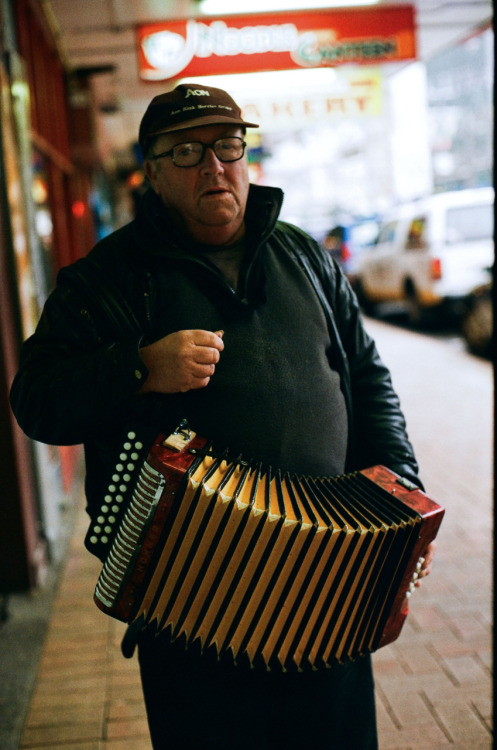 Accordion Player, Courtenay Place, Wellington.