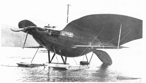 Curtiss Goupil Duck
