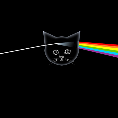 Kitten Floyd - The Dark Side of the Meow