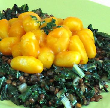 This is Robin Robertson's gnocchi in kabocha sauce over lentils and greens! It's like all of my favorite things in one meal! Click through to Vegan Planet blog for the recipe! Have an autumnal flavors party on your plate!