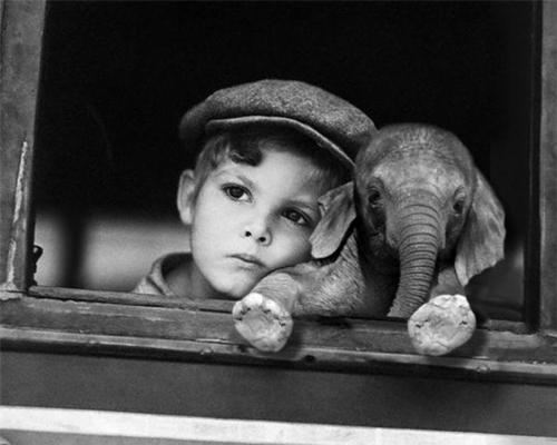 nickthejam:  Just a boy and his elephant.   Cutest ever.
