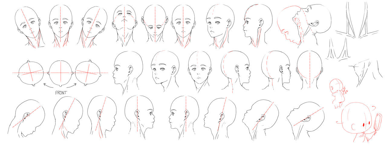 Resources: Head-Neck 1 by =juusan13