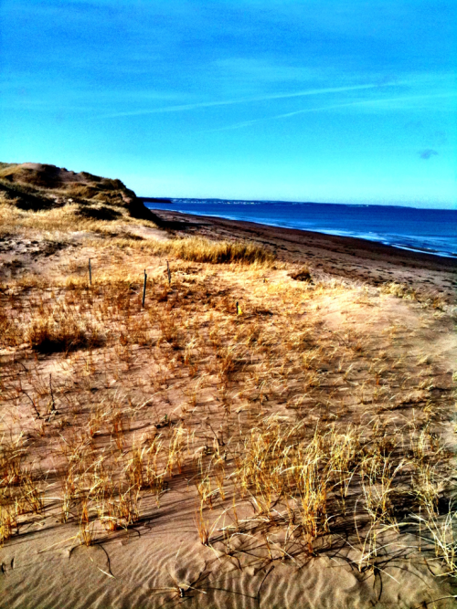 The mystical sand dunes of Brackley beach, PEI, Canada.